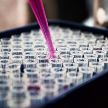 Una <em>spin off</em> «AELIX Therapeutics» ayudará a completar el equipo e impulsar el inmunógeno HTI